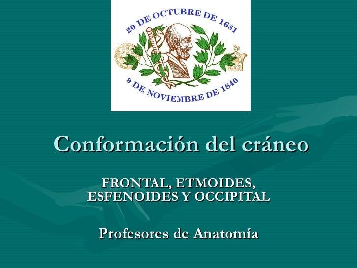 Conformación del cráneo FRONTAL, ETMOIDES, ESFENOIDES Y OCCIPITAL Profesores de Anatomía