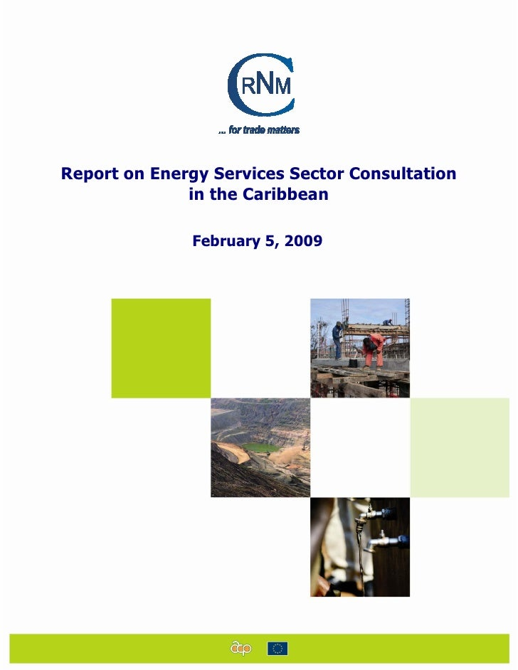 Report on Energy Services Sector Consultation               in the Caribbean                February 5, 2009
