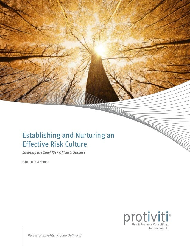 Establishing and Nurturing an Effective Risk Culture Enabling the Chief Risk Officer's Success FOURTH IN A SERIES