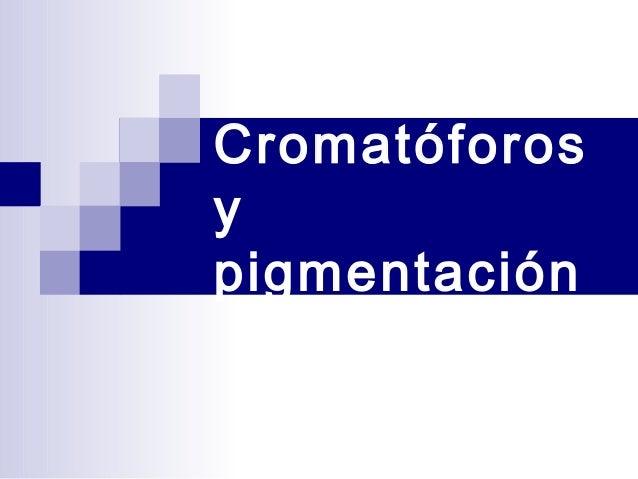 Cromatóforos y pigmentación