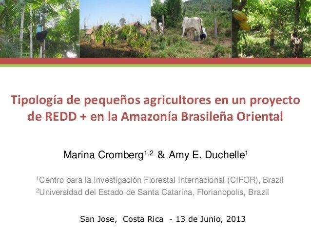 Tipología de pequeños agricultores en un proyecto de REDD + en la Amazonía Brasileña Oriental 1Centro para la Investigació...