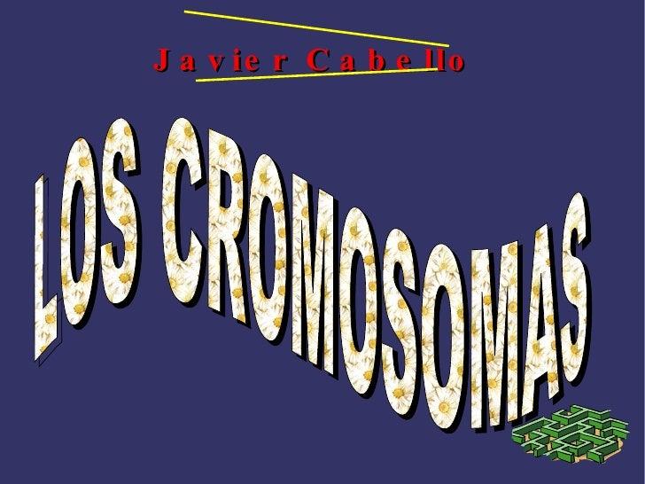 Javier  Cabello   LOS CROMOSOMAS