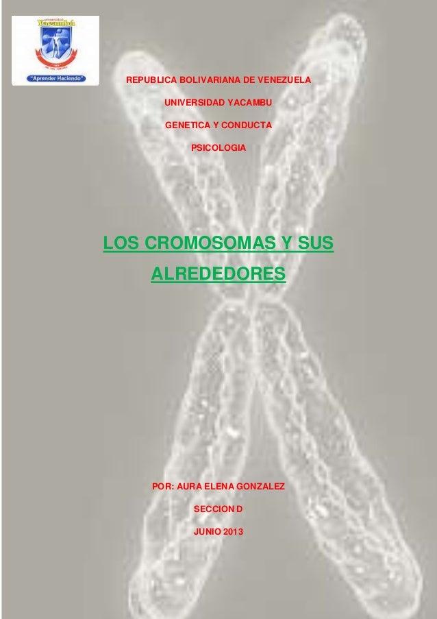 REPUBLICA BOLIVARIANA DE VENEZUELA UNIVERSIDAD YACAMBU GENETICA Y CONDUCTA PSICOLOGIA LOS CROMOSOMAS Y SUS ALREDEDORES POR...