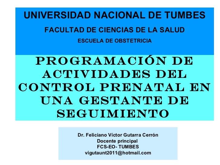 UNIVERSIDAD NACIONAL DE TUMBES   FACULTAD DE CIENCIAS DE LA SALUD          ESCUELA DE OBSTETRICIA  PROGRAMACIÓN DE   ACTIV...