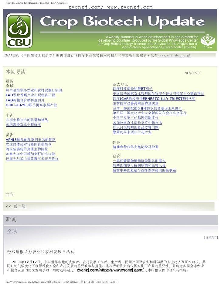 Crop biotech update (december 11, 2009)   isaaa.org kc