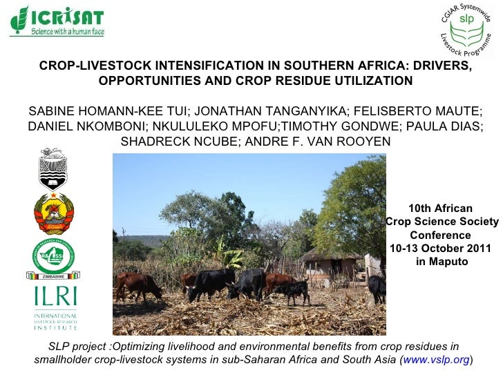 CROP-LIVESTOCK INTENSIFICATION IN SOUTHERN AFRICA: DRIVERS, OPPORTUNITIES AND CROP RESIDUE UTILIZATION SABINE HOMANN-KEE T...
