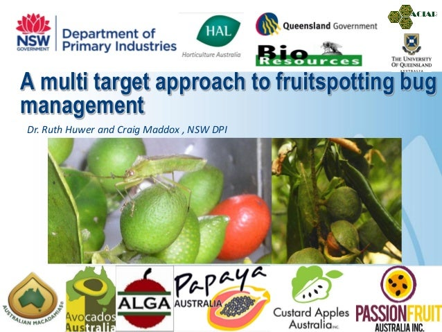 A multi target approach to fruitspotting bugmanagementDr. Ruth Huwer and Craig Maddox , NSW DPI