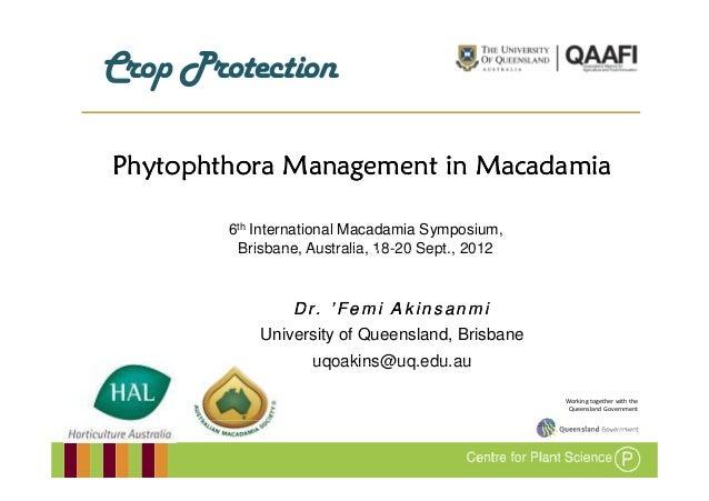 C pPCrop ProtectionPhytophthora Management in Macadamia        6th International Macadamia Symposium,         Brisbane, Au...