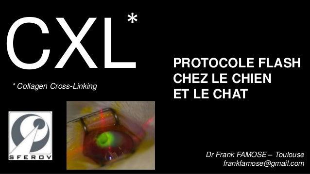 *CXL* Collagen Cross-Linking                               PROTOCOLE FLASH                               CHEZ LE CHIEN    ...