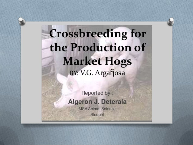Crossbreeding for the Production of Market Hogs BY: V.G. Argaῆosa Reported by : Algeron J. Deterala MSA Animal Science Stu...