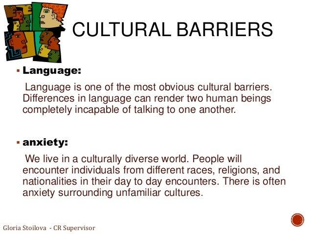 cultural diversity final paper