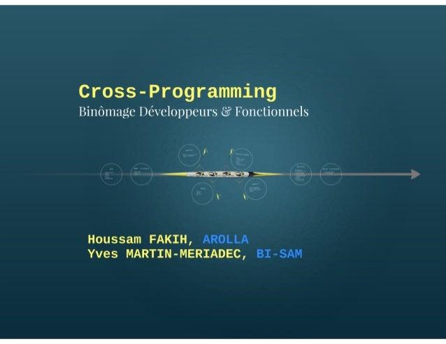 Cross-Programming : Forging the future of programming