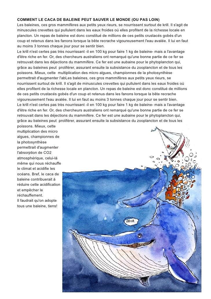 COMMENT LE CACA DE BALEINE PEUT SAUVER LE MONDE (OU PAS LOIN)Les baleines, ces gros mammifères aux petits yeux rieurs, se ...