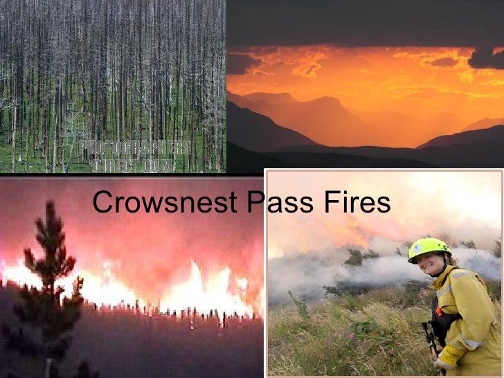 Crowsnest Pass Fires