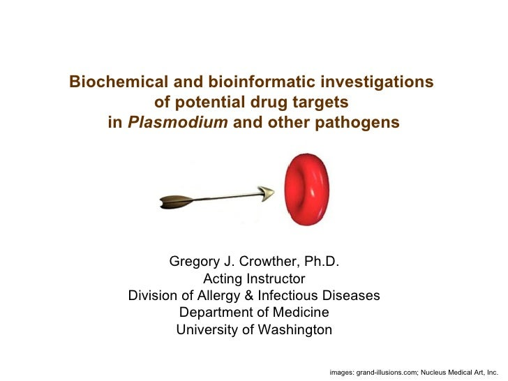 Biochemical and bioinformatic investigations of potential drug targets in Plasmodium and other pathogens