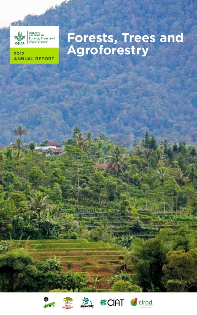 CRP6 2012 Annual Report