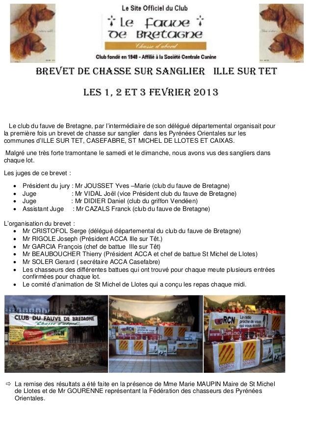 BREVET DE CHASSE SUR SANGLIER ILLE SUR TET                            LES 1, 2 Et 3 FEVRIER 2013  Le club du fauve de Bret...