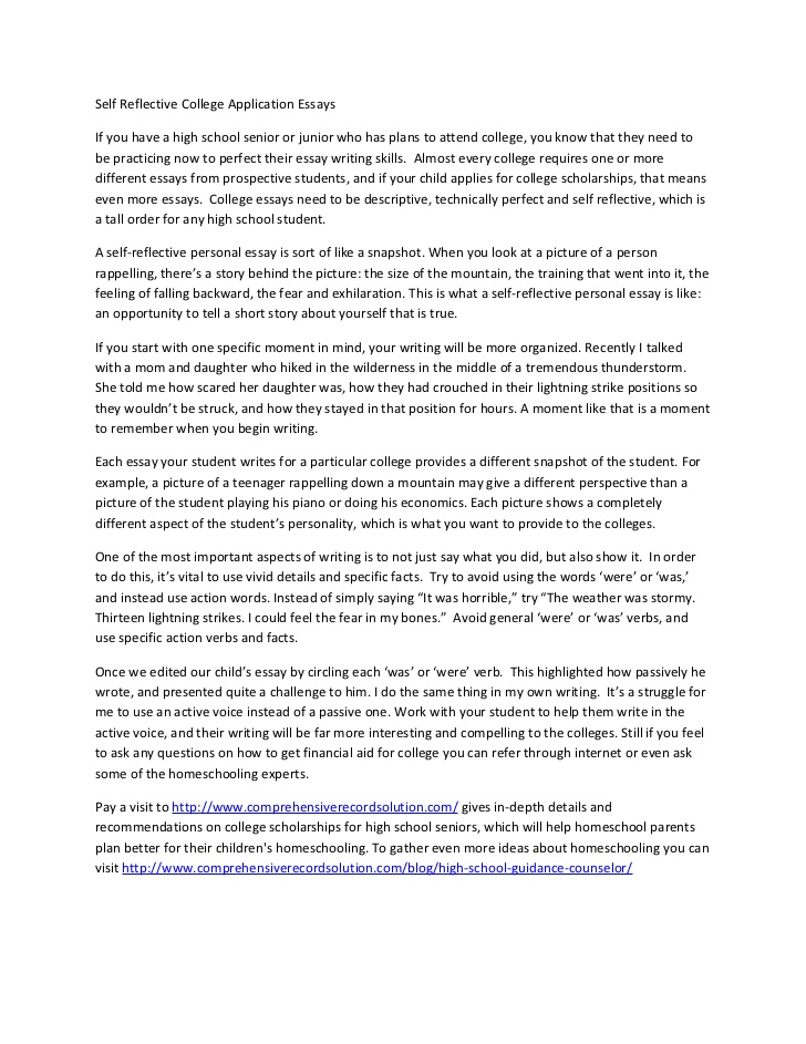 College application essay help online nativeagle.com