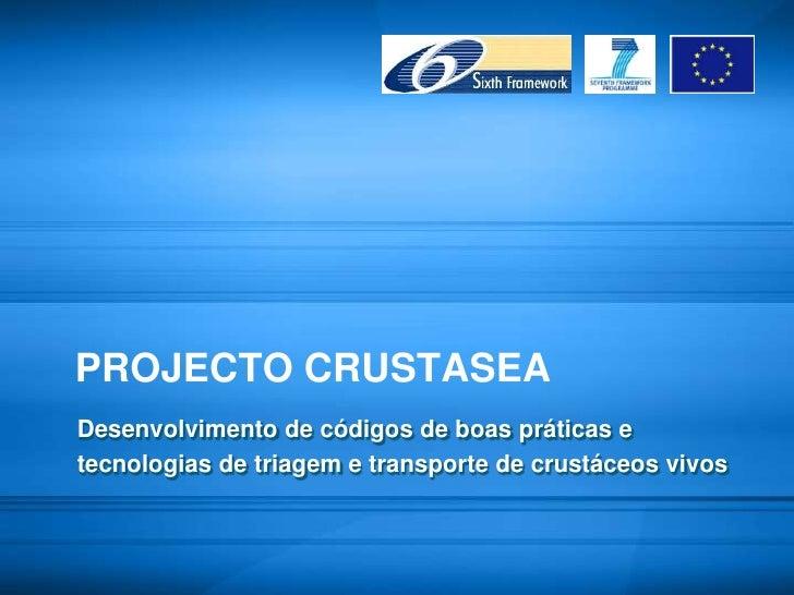 PROJECTO CRUSTASEA<br />Desenvolvimento de códigos de boas práticas e <br />tecnologias de triagem e transporte de crustác...