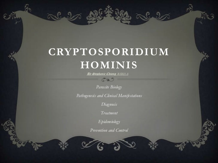 CRYPTOSPORIDIUM    HOMINIS         By Stephanie Chiong BSBI3A               Parasite Biology   Pathogenesis and Clinical M...