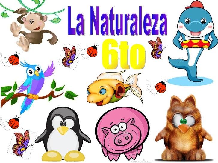 La Naturaleza 6to