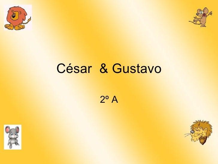 César  & Gustavo 2º A