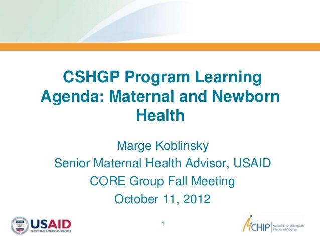 CSHGP Program LearningAgenda: Maternal and Newborn           Health           Marge Koblinsky Senior Maternal Health Advis...