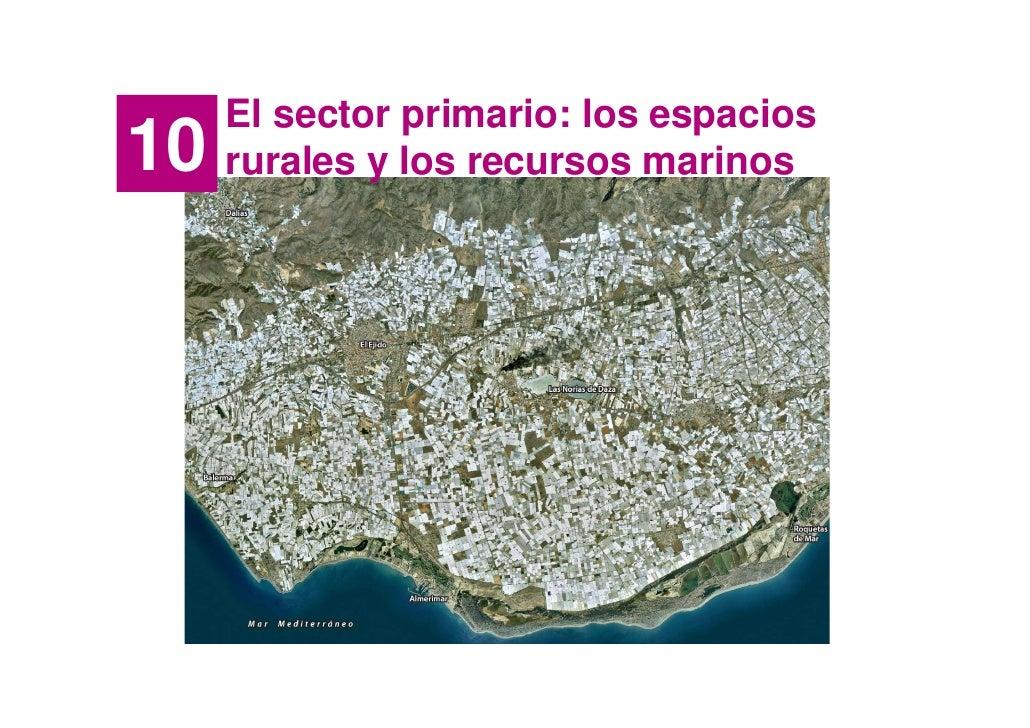 El sector primario: los espacios 10   rurales y los recursos marinos