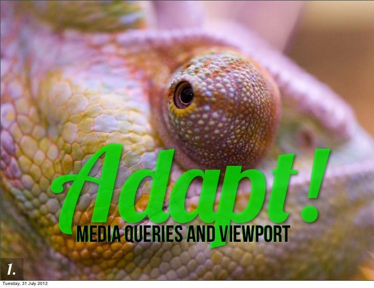 Adapt! Media queries and viewport
