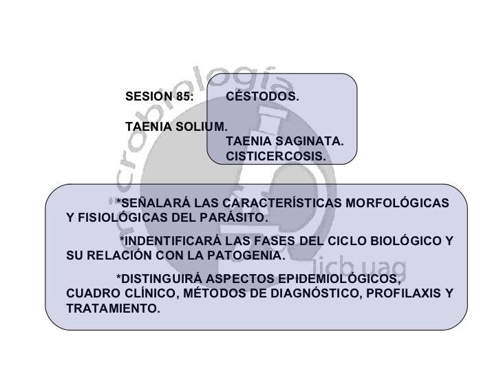 SESION 85:  CÉSTODOS.  TAENIA SOLIUM.  TAENIA SAGINATA. CISTICERCOSIS. *SEÑALARÁ LAS CARACTERÍSTICAS MORFOLÓGICAS Y FISIOL...