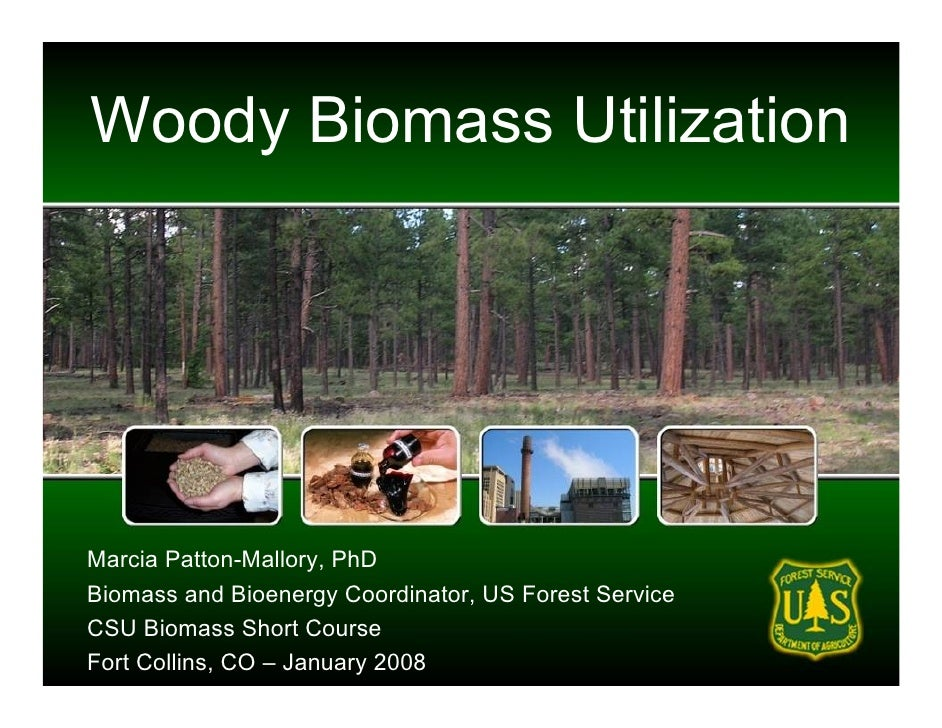 Woody Biomass Utilization     Marcia Patton-Mallory, PhD Biomass and Bioenergy Coordinator, US Forest Service CSU Biomass ...