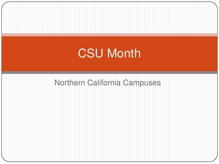 CSU Month 3