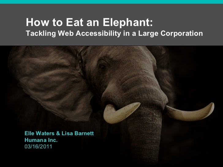 How to Eat an Elephant:  Tackling Web Accessibility in a Large Corporation Elle Waters & Lisa Barnett Humana Inc. 03/16/2011