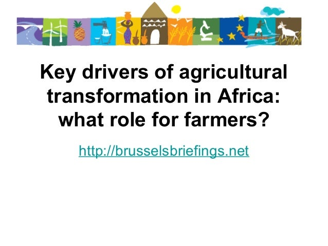 Key drivers of agricultural transformation in Africa: what role for farmers? http://brusselsbriefings.net