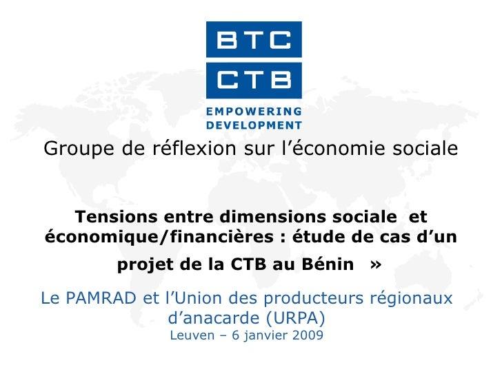 Groupe de réflexion sur l'économie sociale  Tensions entre dimensions sociale  et économique/financières : étude de cas d'...