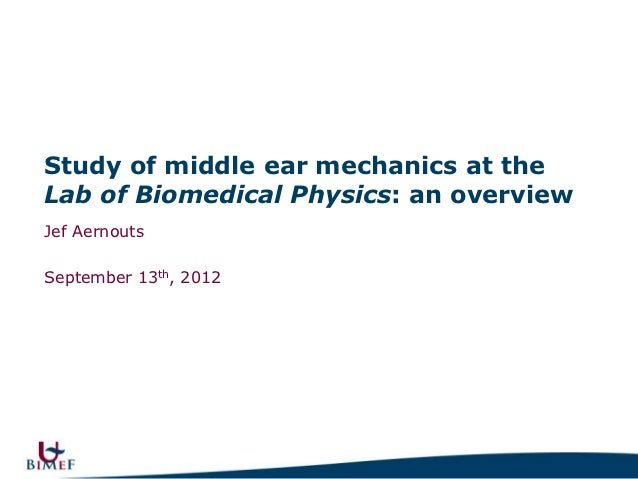 Study of middle ear mechanics at the Lab of Biomedical Physics: an overview