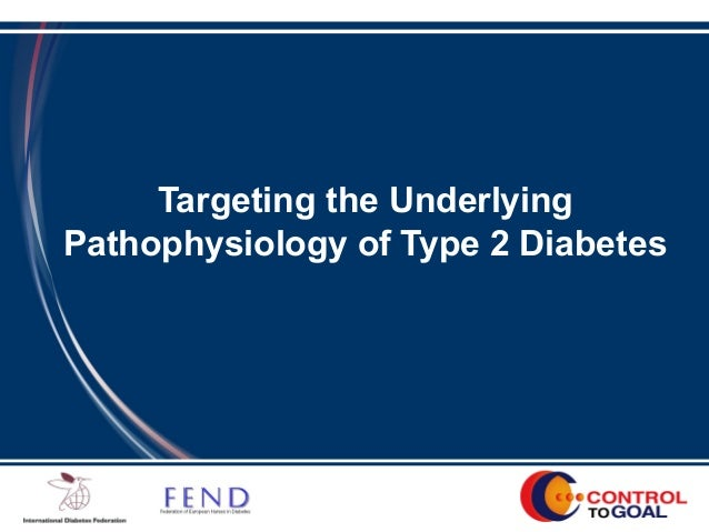 Targeting the Underlying Pathophysiology of Type 2 Diabetes