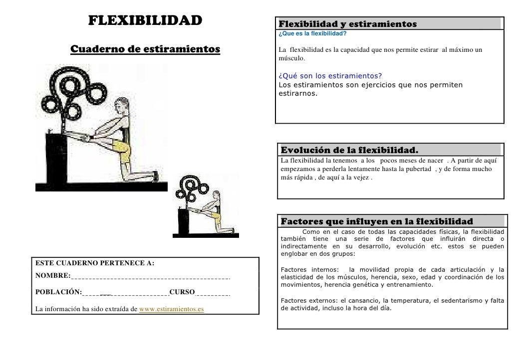 FLEXIBILIDAD                             Flexibilidad y estiramientos                                                     ...