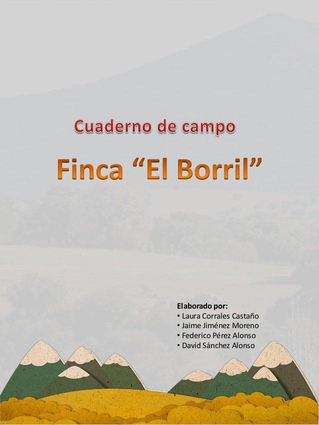 Elaborado por: • Laura Corrales Castaño • Jaime Jiménez Moreno • Federico Pérez Alonso • David Sánchez Alonso