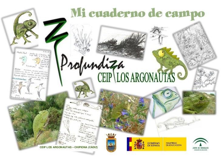 Cuaderno de campo camaleón