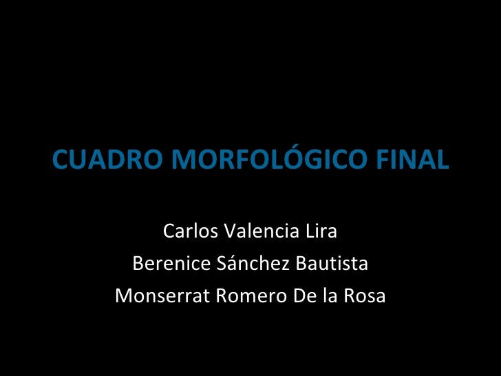 CUADRO MORFOLÓGICO FINAL Carlos Valencia Lira Berenice Sánchez Bautista Monserrat Romero De la Rosa