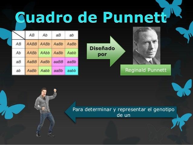 Reginald Punnett  Para determinar y representar el genotipo de un