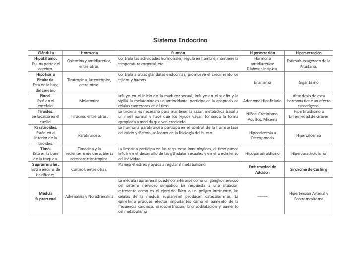 Sistema Endocrino     Glándula                Hormona                                           Función                   ...
