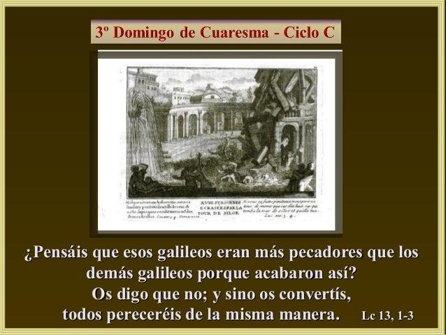 Cuc3 13
