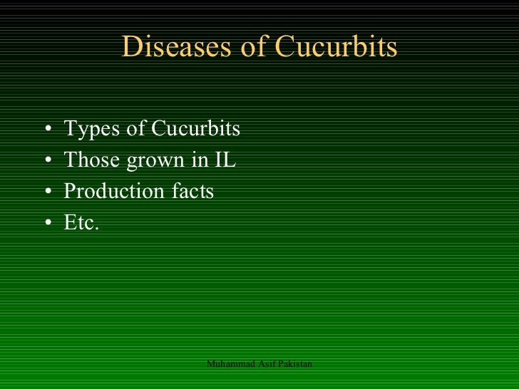 Diseases of Cucurbits <ul><li>Types of Cucurbits </li></ul><ul><li>Those grown in IL </li></ul><ul><li>Production facts </...