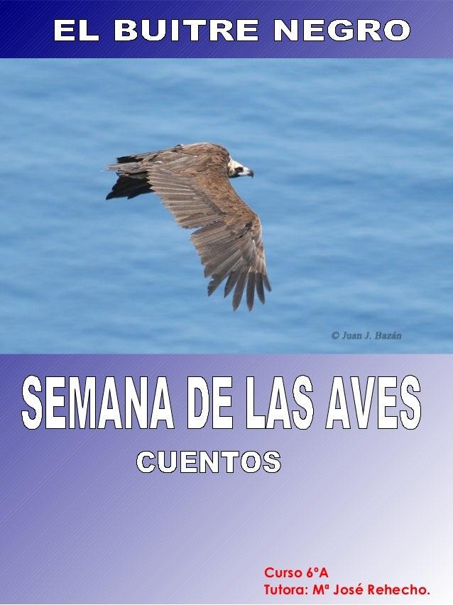 Curso 6ºA Tutora: Mª José Rehecho.