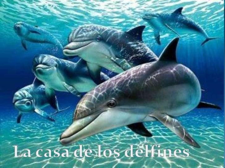 La casa de los delfines