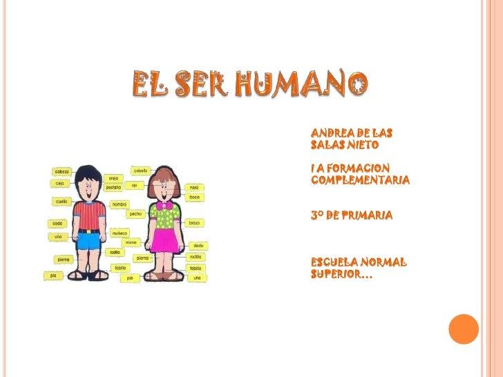 EL SER HUMANO<br />ANDREA DE LAS SALAS NIETO<br />I A FORMACION COMPLEMENTARIA<br />3° DE PRIMARIA<br />ESCUELA NORMAL SUP...