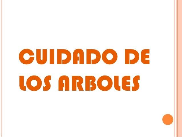 CUIDADO DE LOS ARBOLES
