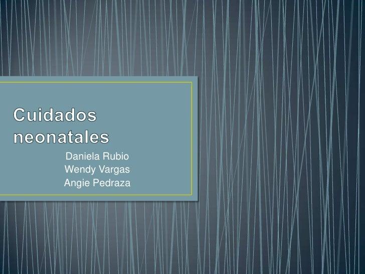 Cuidados neonatales <br />Daniela Rubio <br />Wendy Vargas<br />Angie Pedraza <br />
